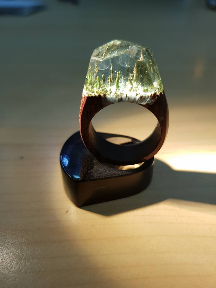 Snow Forest Ring - Khu rừng tuyết