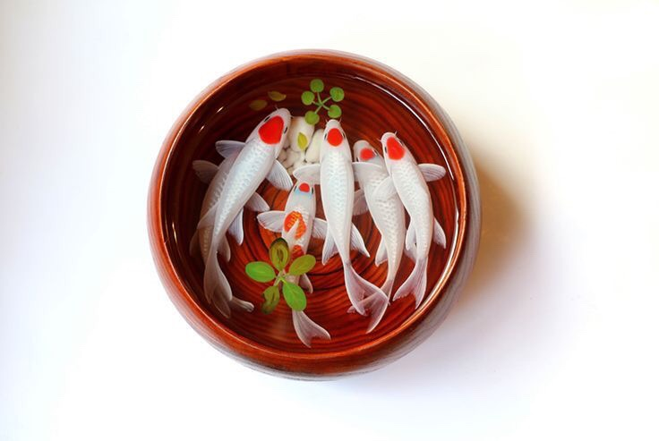 A school of Tancho Koi resin painting